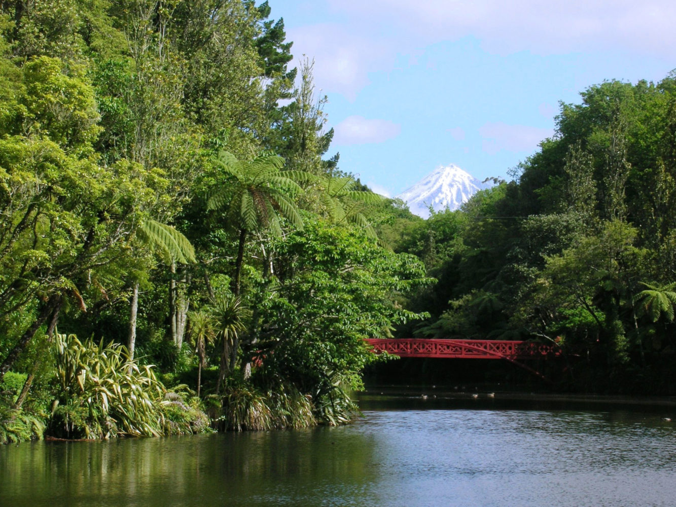 New Plymouth: City Guide