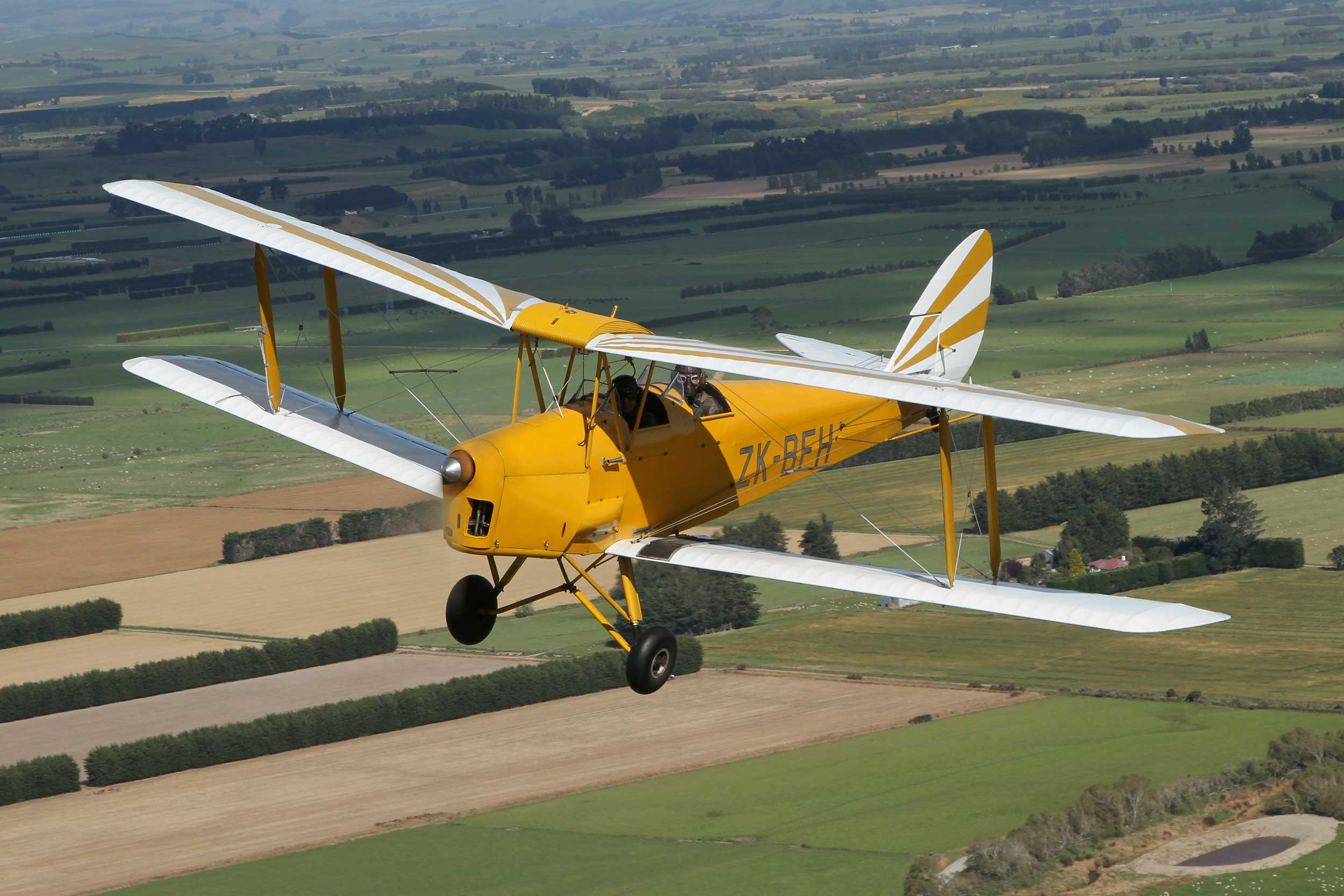 A yellow bi-plane in the air above farmland in New Zealand