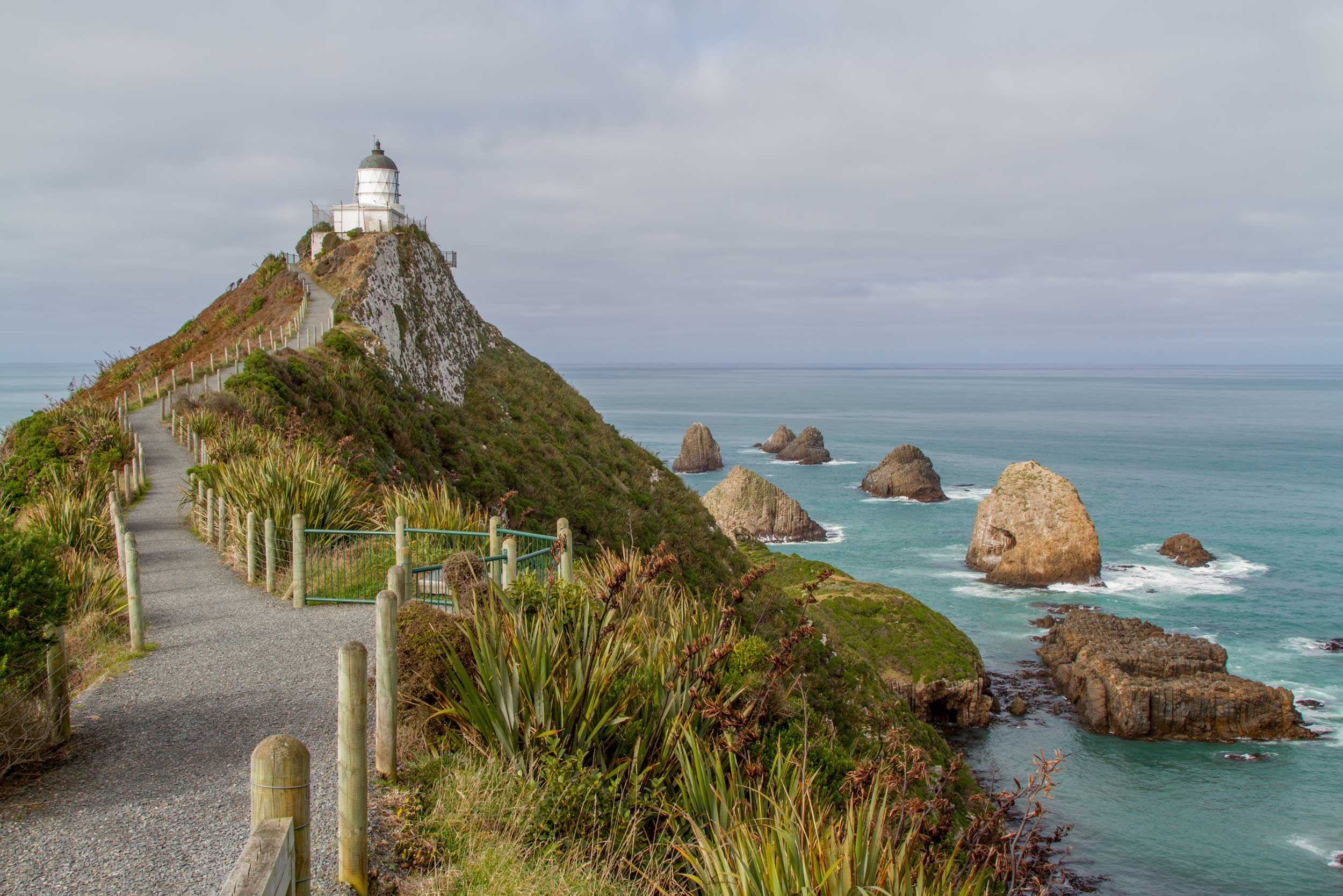 A winding pathway through flax up to a white lighthouse with boulders scattered in the sea past it, New Zealand