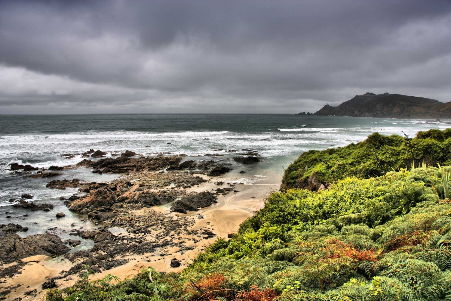 The Wild South: The Catlins and Curio Bay
