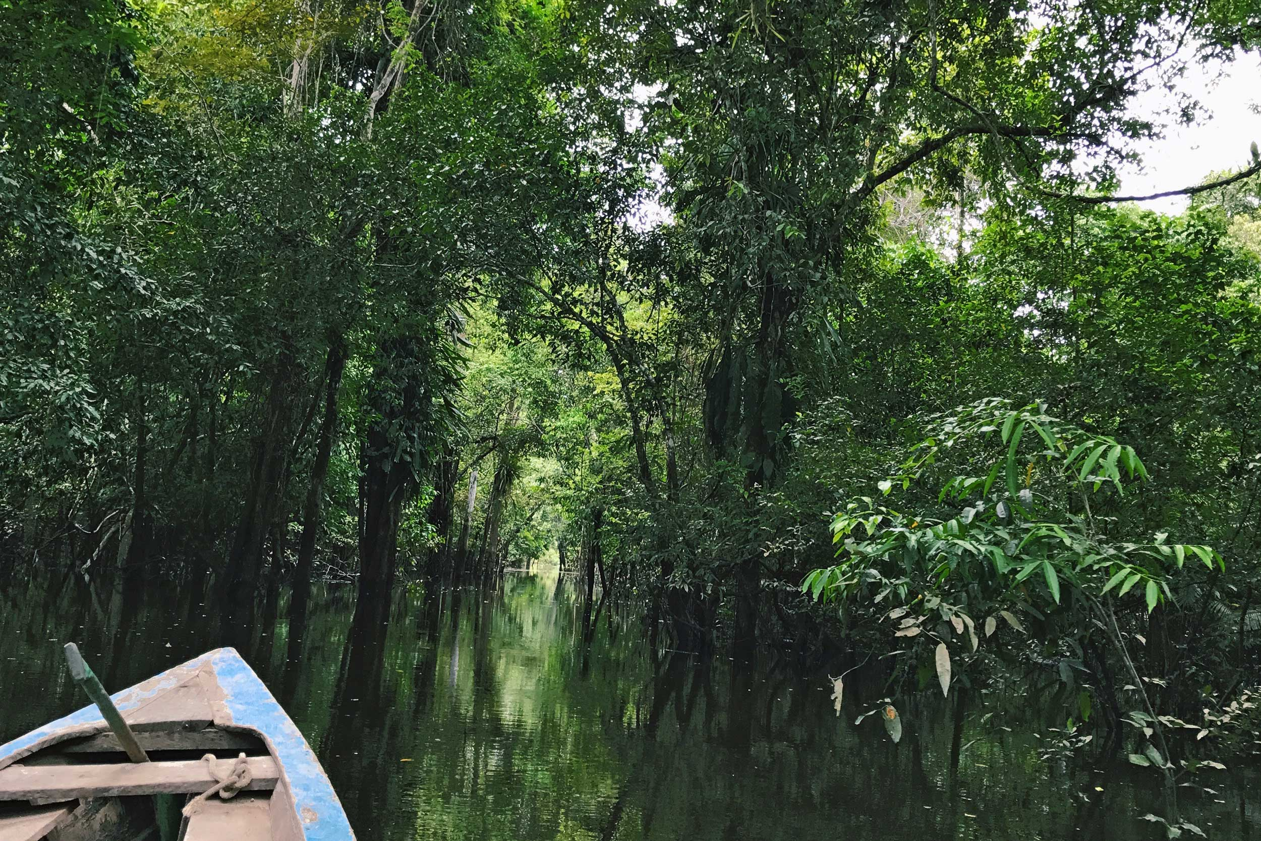 Prow of a skiff gliding through a dark, mysterious, green waterway in Per