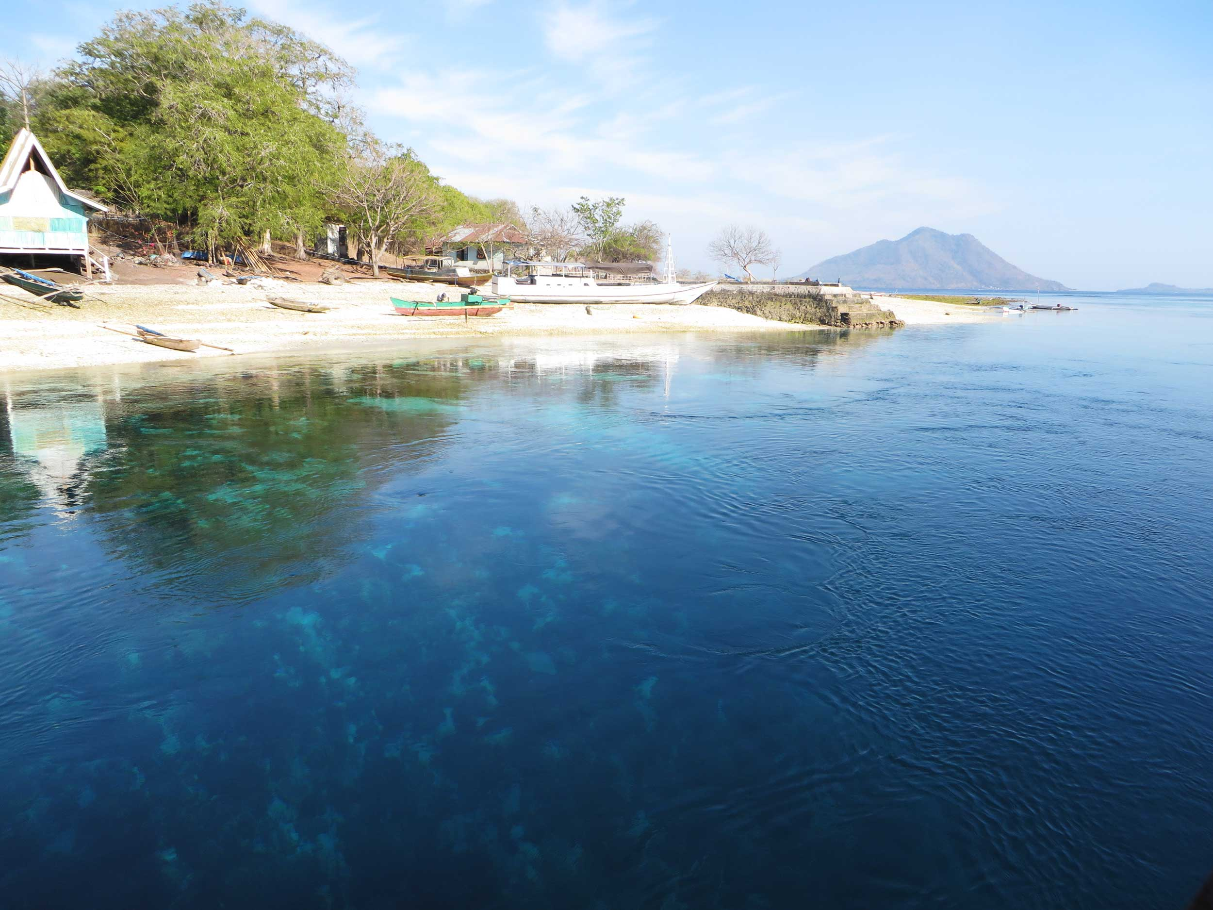 View over deep blue water to a sandy beachwith beached boats and green trees, West Timor