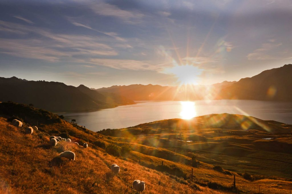 Looking out from Isthmus Peak towards Lake Hawea at sunset.