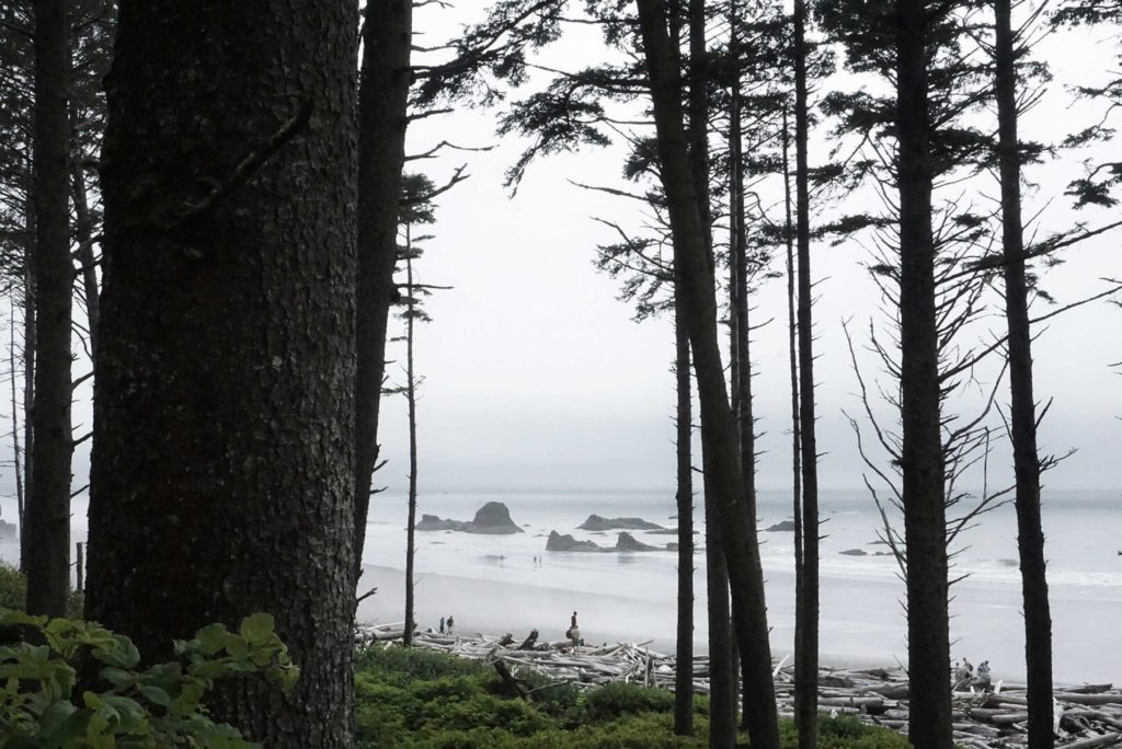 Ruby Beach on the Washington State coastline gets its name from the ruby-like crystals found in the sand. Like virtually all beaches on the northern coast, it is characterised by the vast amount of driftwood deposited on the beach.