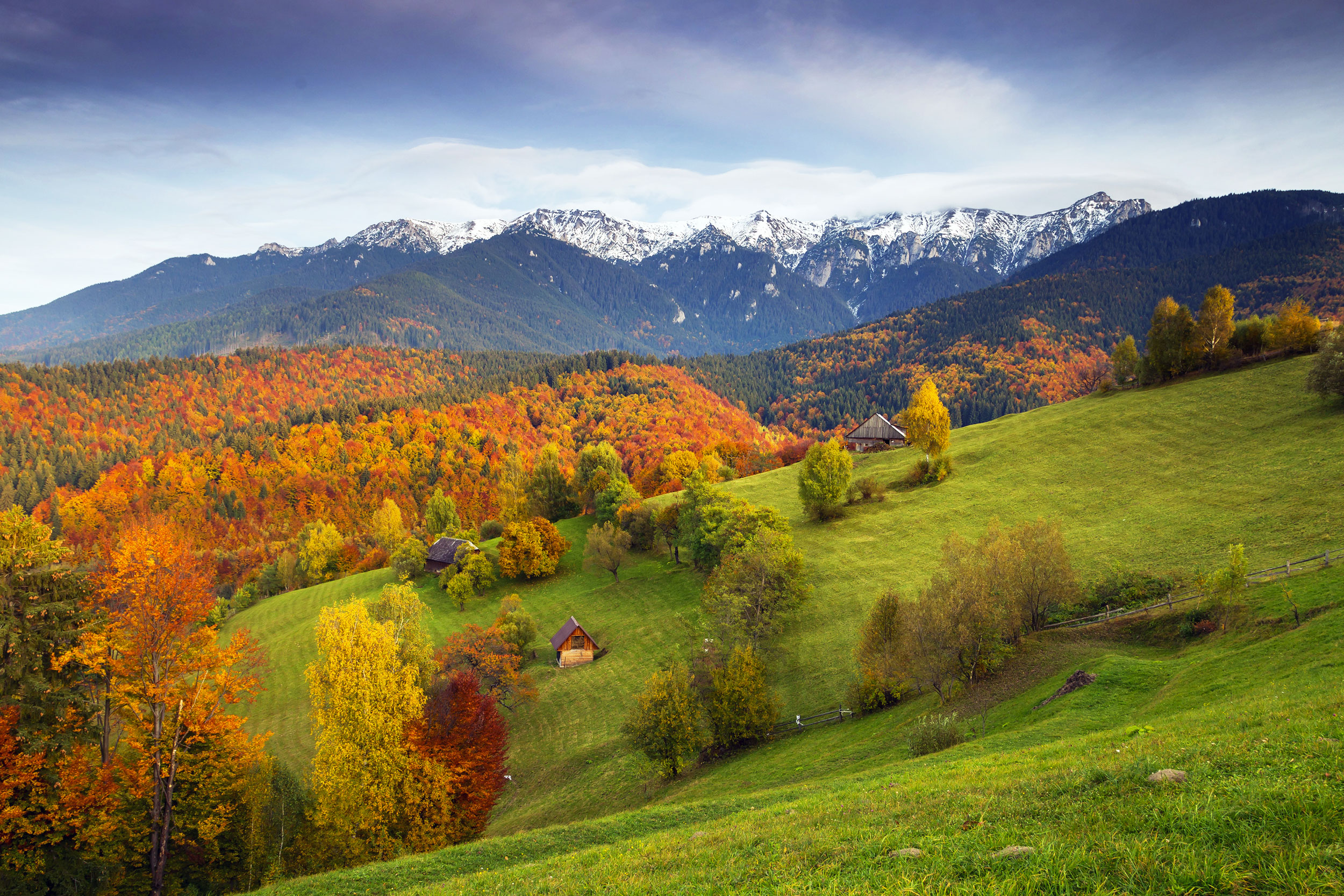 Rolling autumn-coloured countryside going into thickly forested hills with snow-capped mountains in the distance, Romania