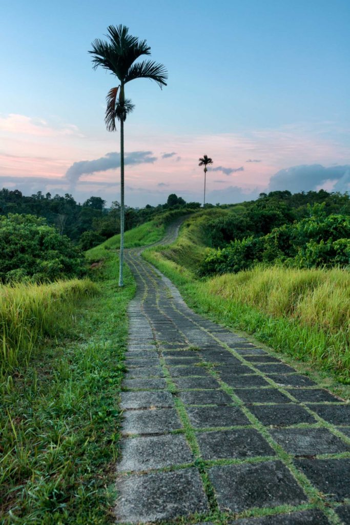 The Campuhan Ridge walk is one of the most popular activities in Ubud, Bali. The beautiful walk over the mountain's ridge ends at a rice paddy and cafe where the tired hiker can get a coffee and watch the sun set over the ridge.