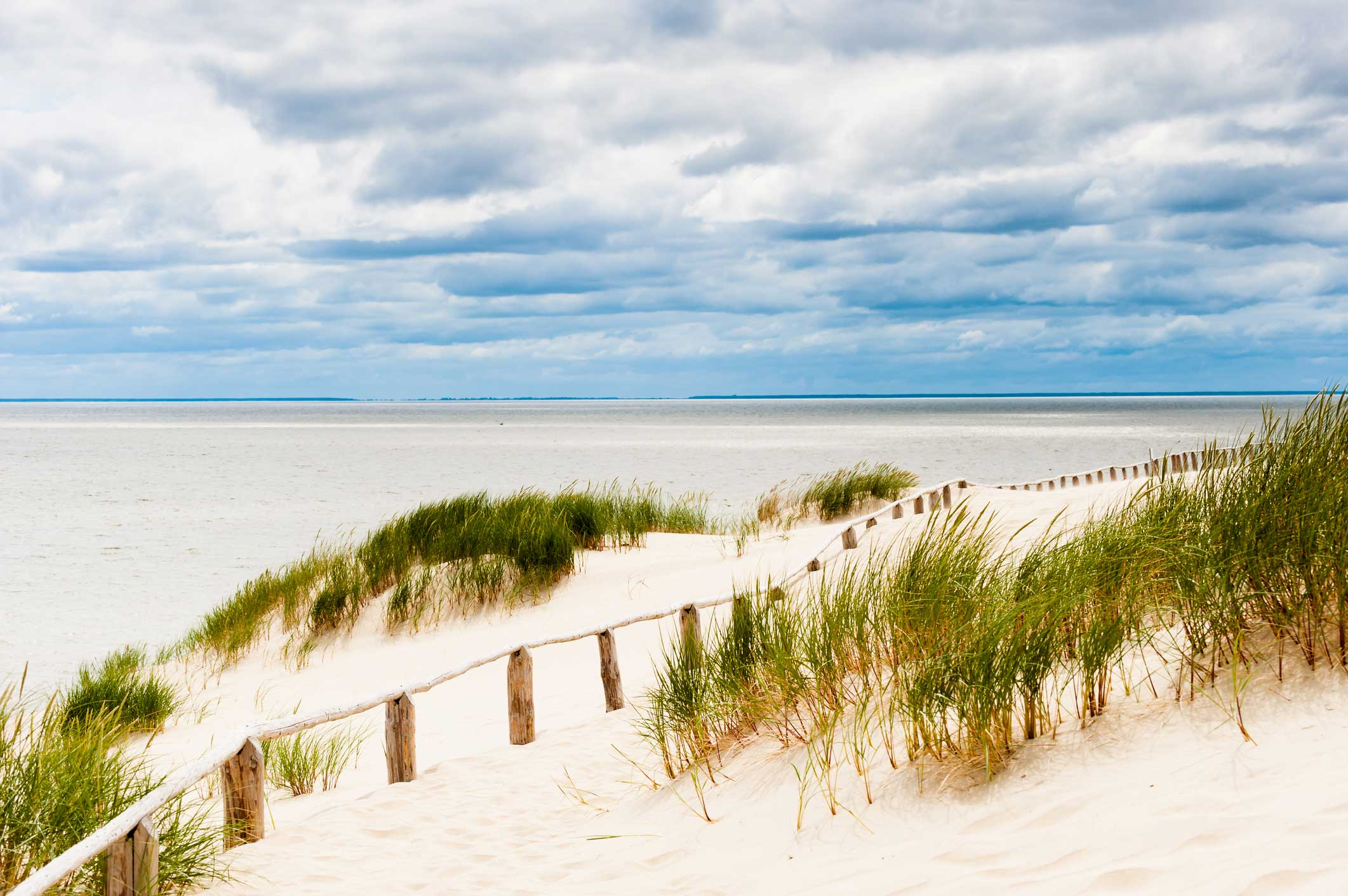 Fence running across a sand dune in the Curonian Spit, Lithuania