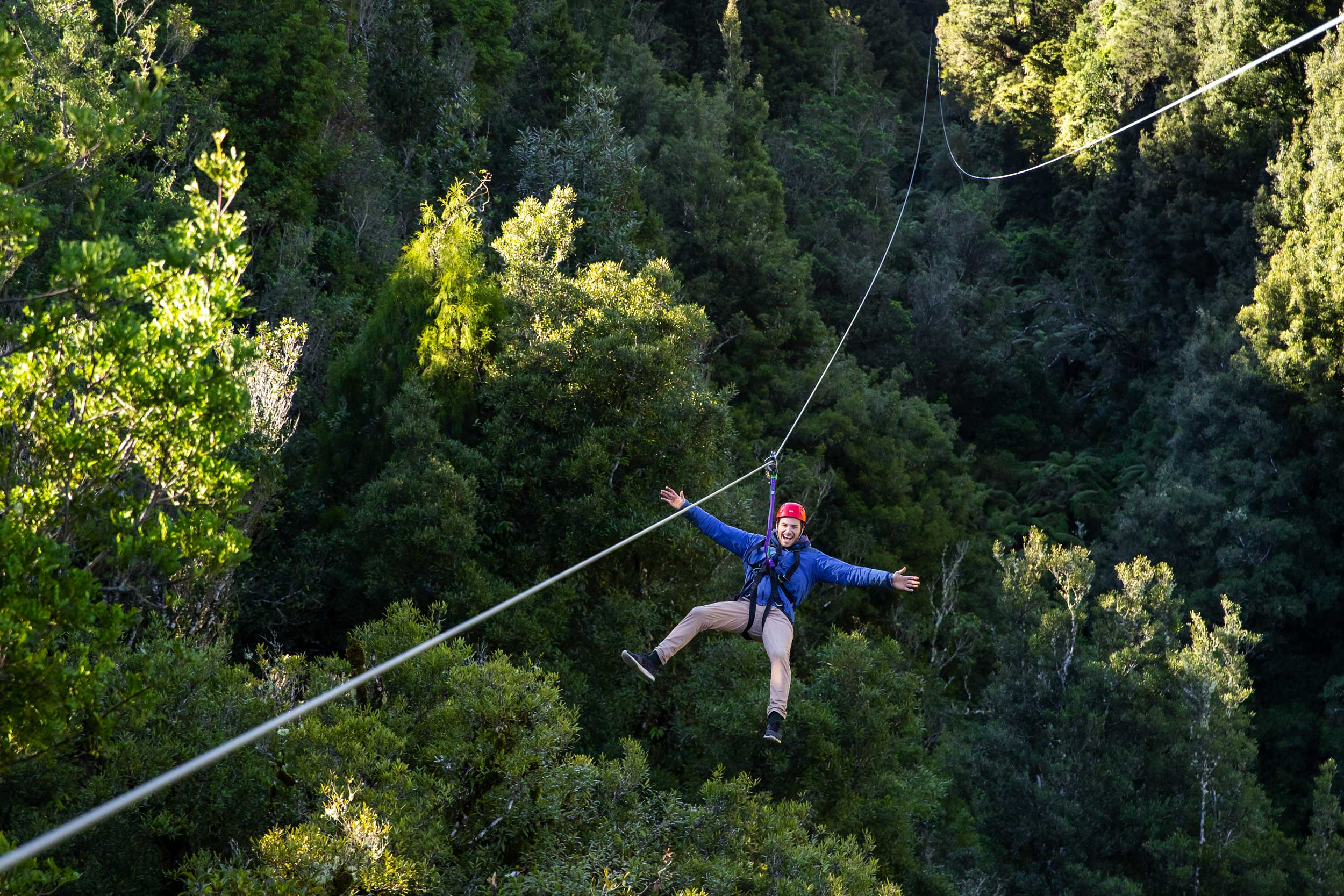 Man on a zipline travelling backwards over forest, Rotorua