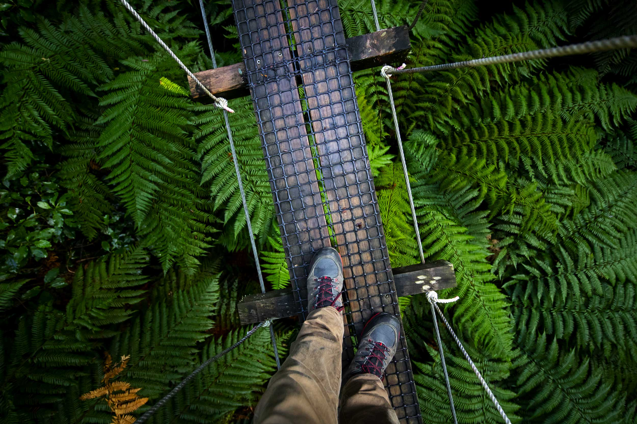 Downward shot of feet on a very narrow swing bridge, Rotorua
