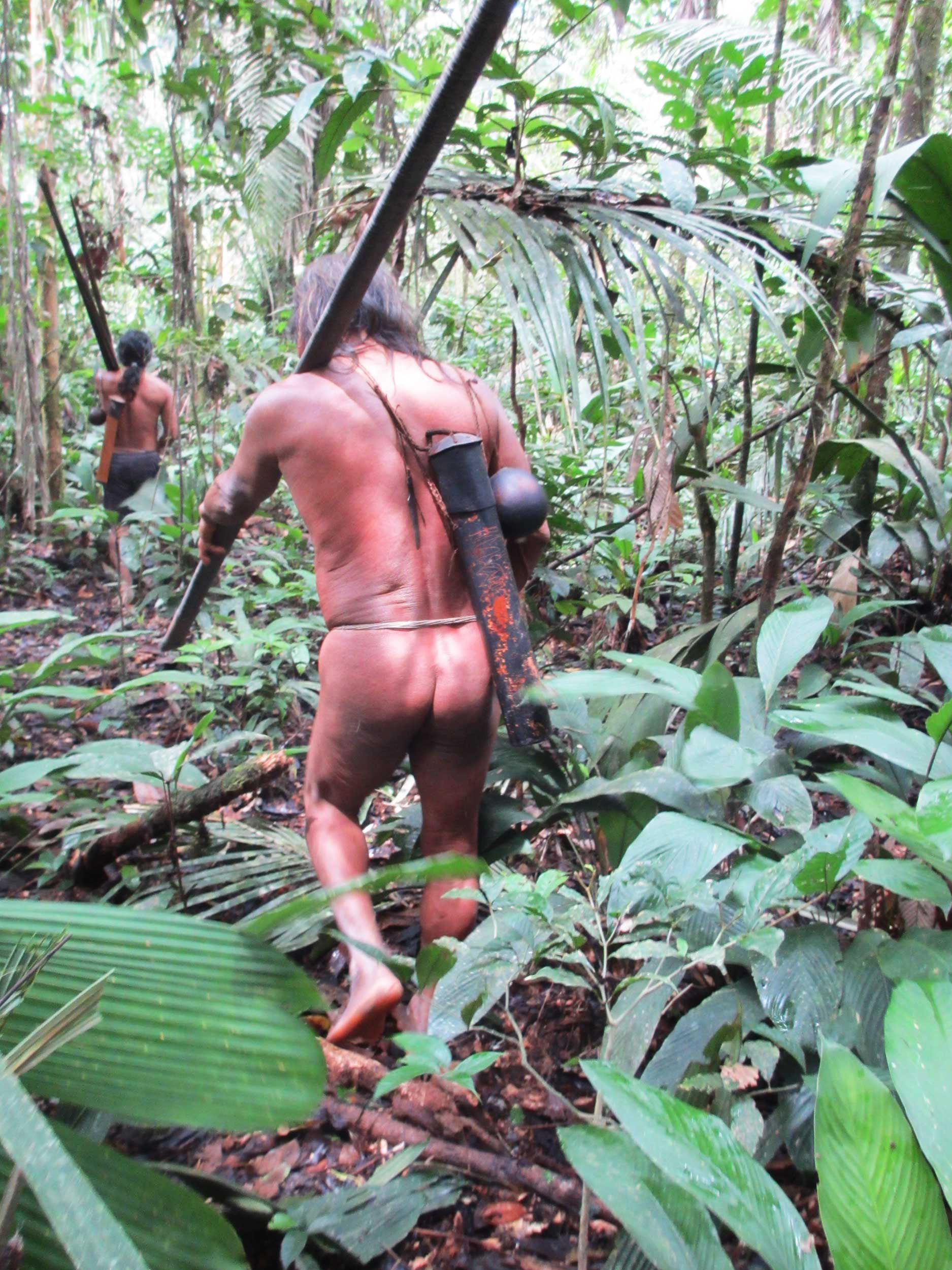 Two naked hunters in the jungle carrying spears, blow-guns and darts, Bameno, Ecuador