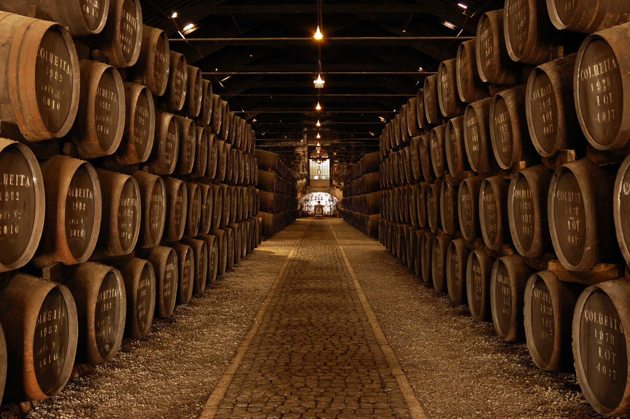 Rows of stacked wooden barrels in a stone cellar, Porto