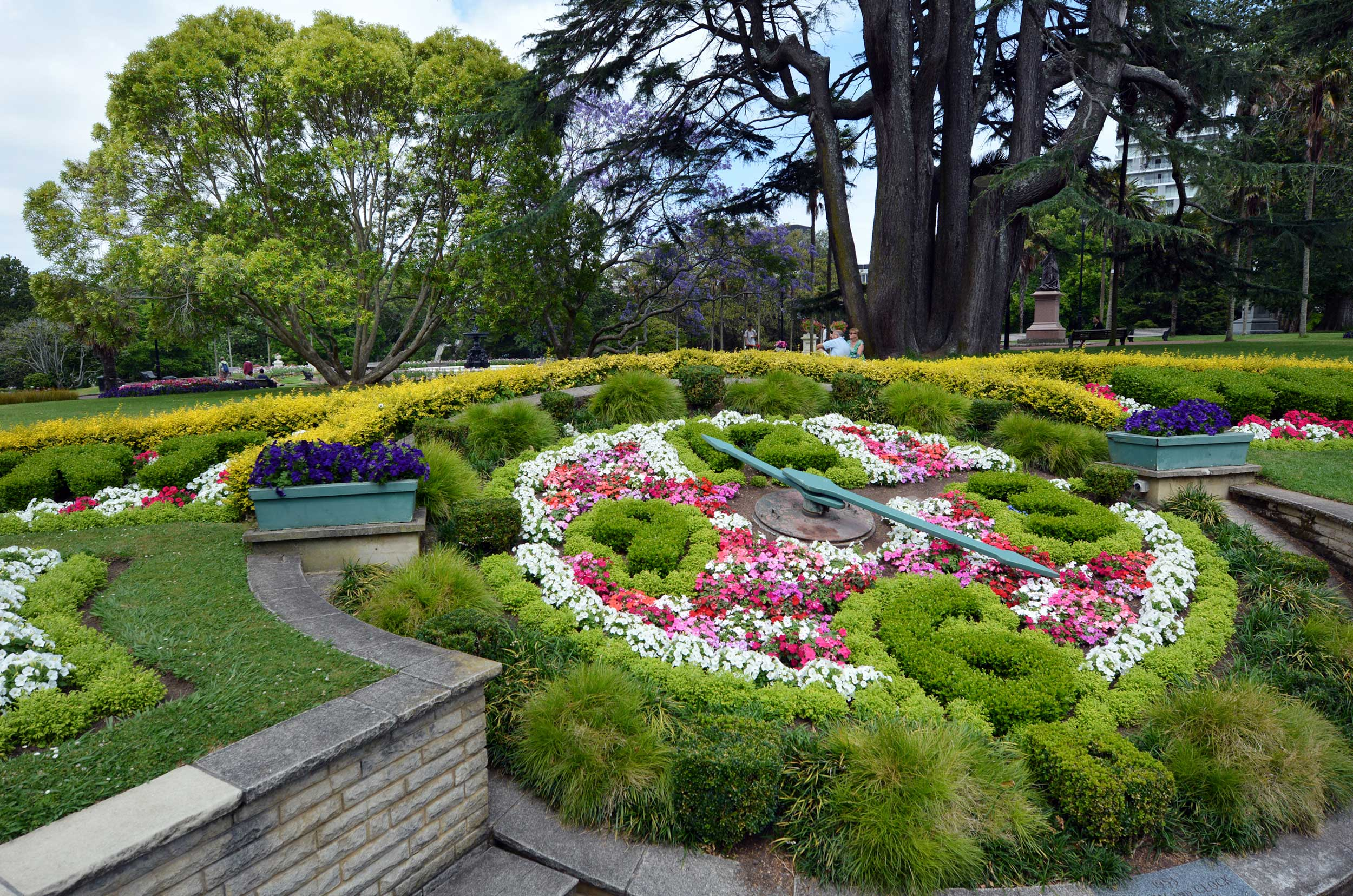 A multi-floral clock in Albert Park, Auckland