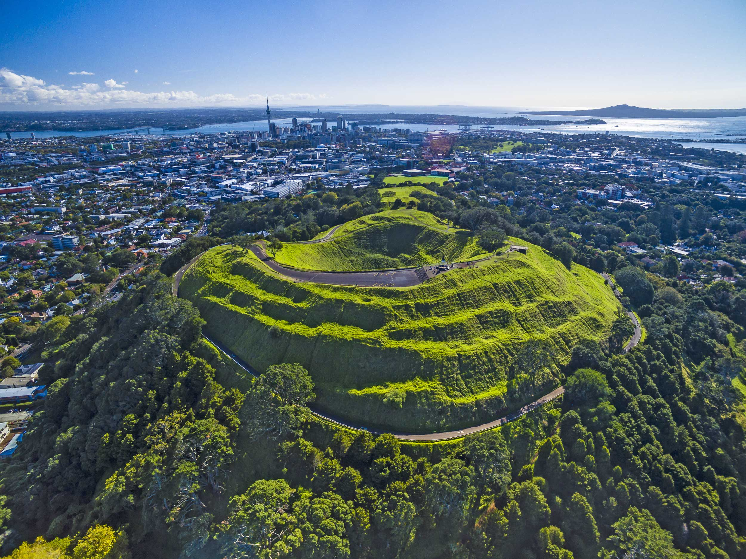 Aerial view of a grassy and forested volcano with Auckland city in the distance