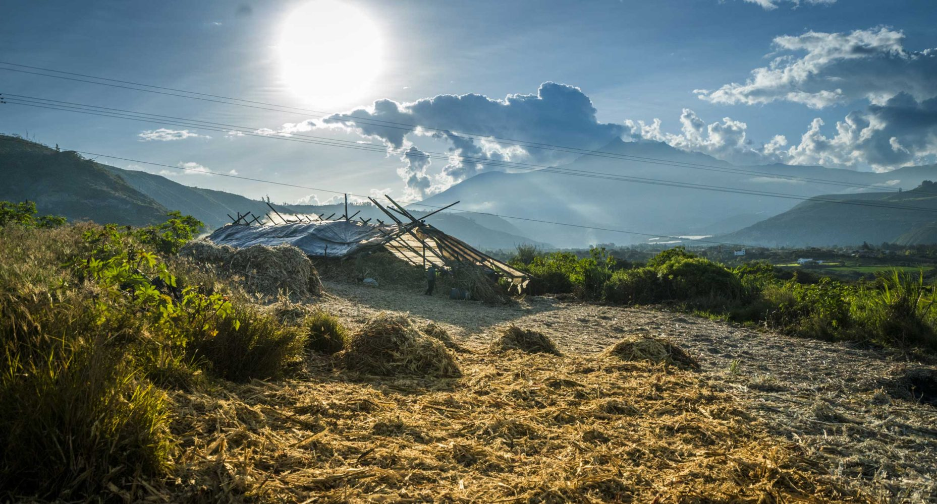 The Sweet Life: Ecuador's Traditional Sugar Production