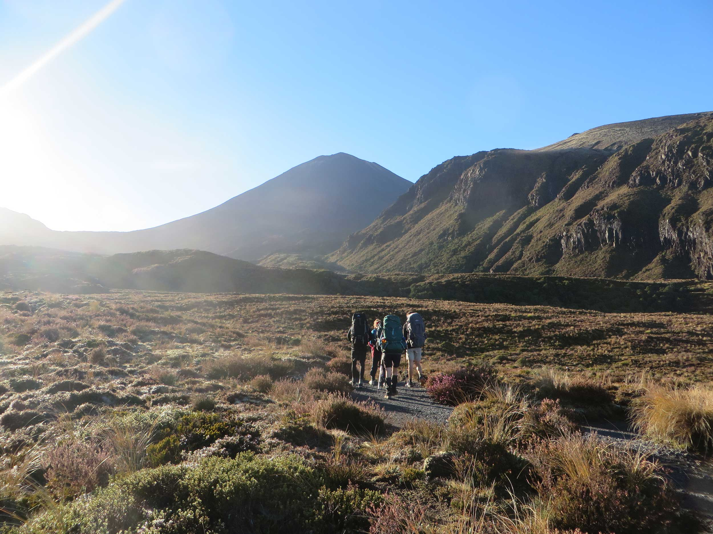 Four trampers walking away on alpine terrain, Tongariro, New Zealand