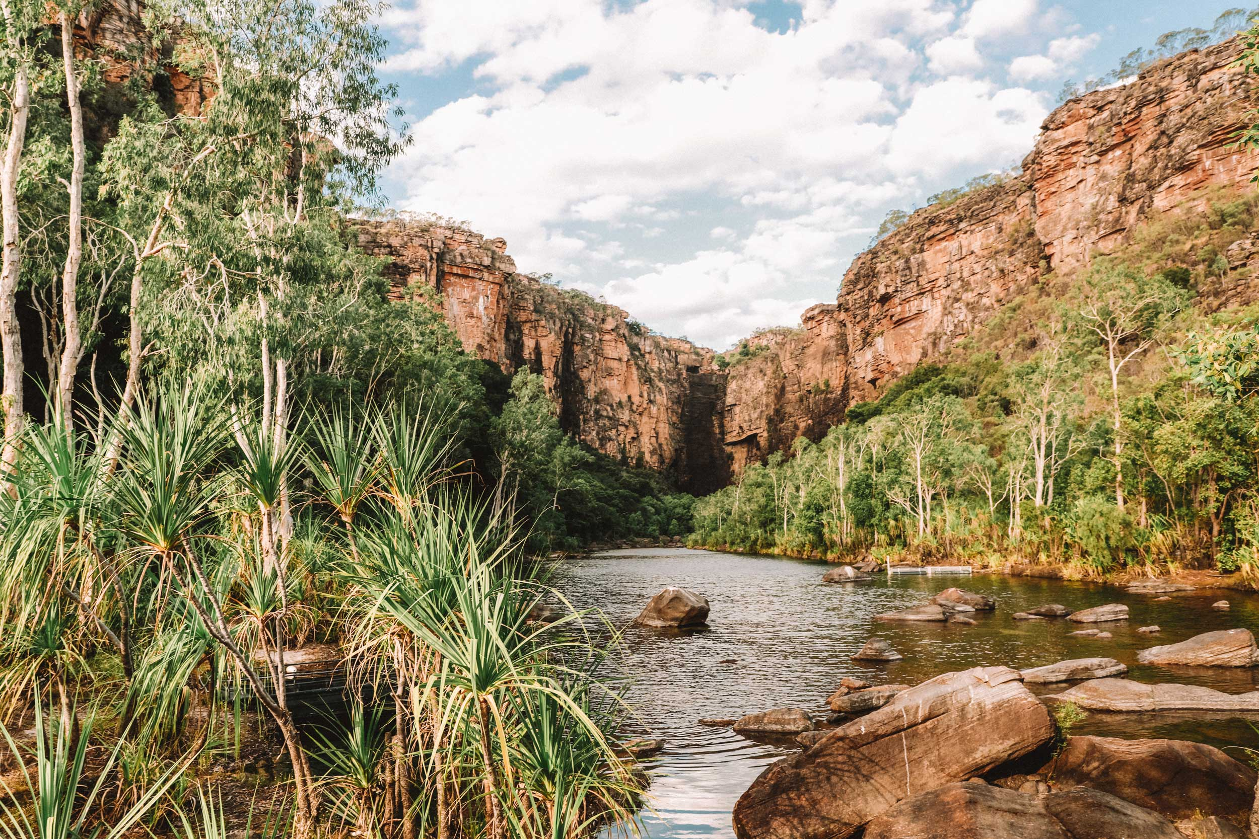 River running through lush green foliage in a gorge, Kakadu National Park