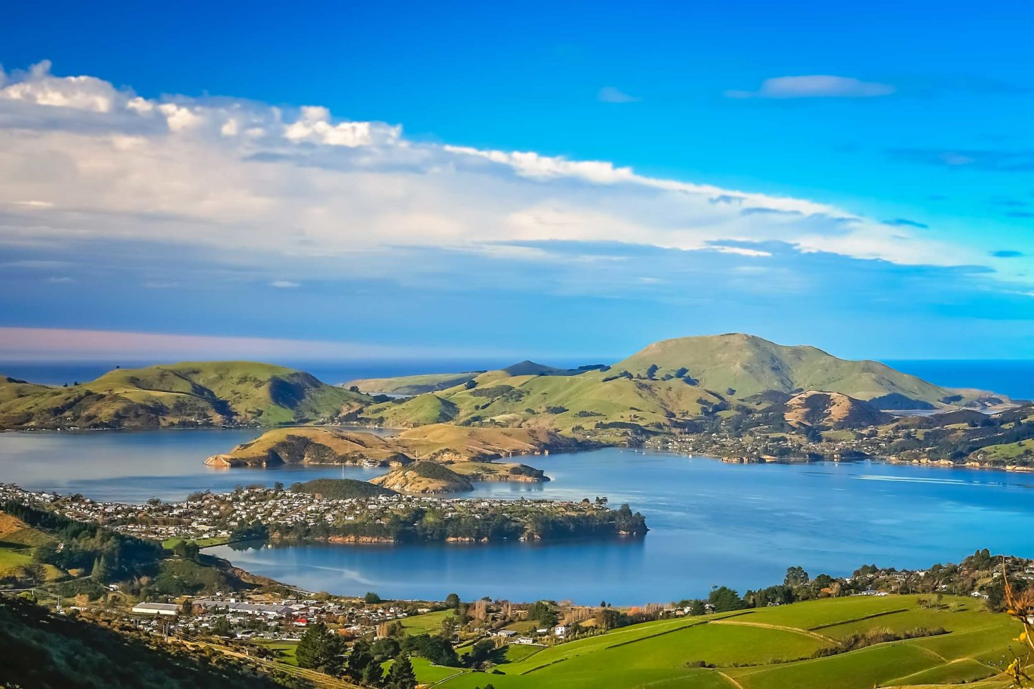Dunedin: City Guide — Part One