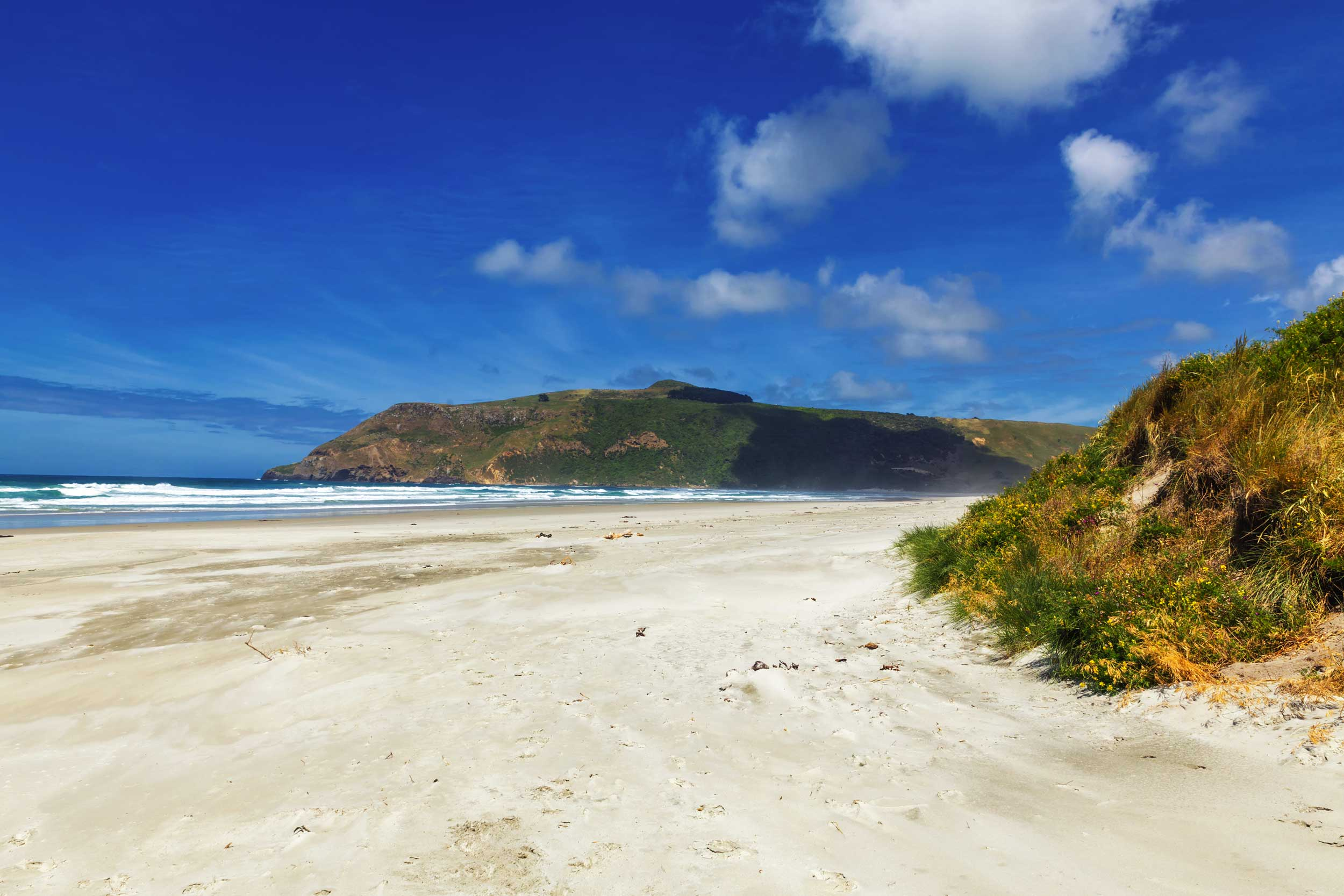 Empty sandy beach, Dunedin