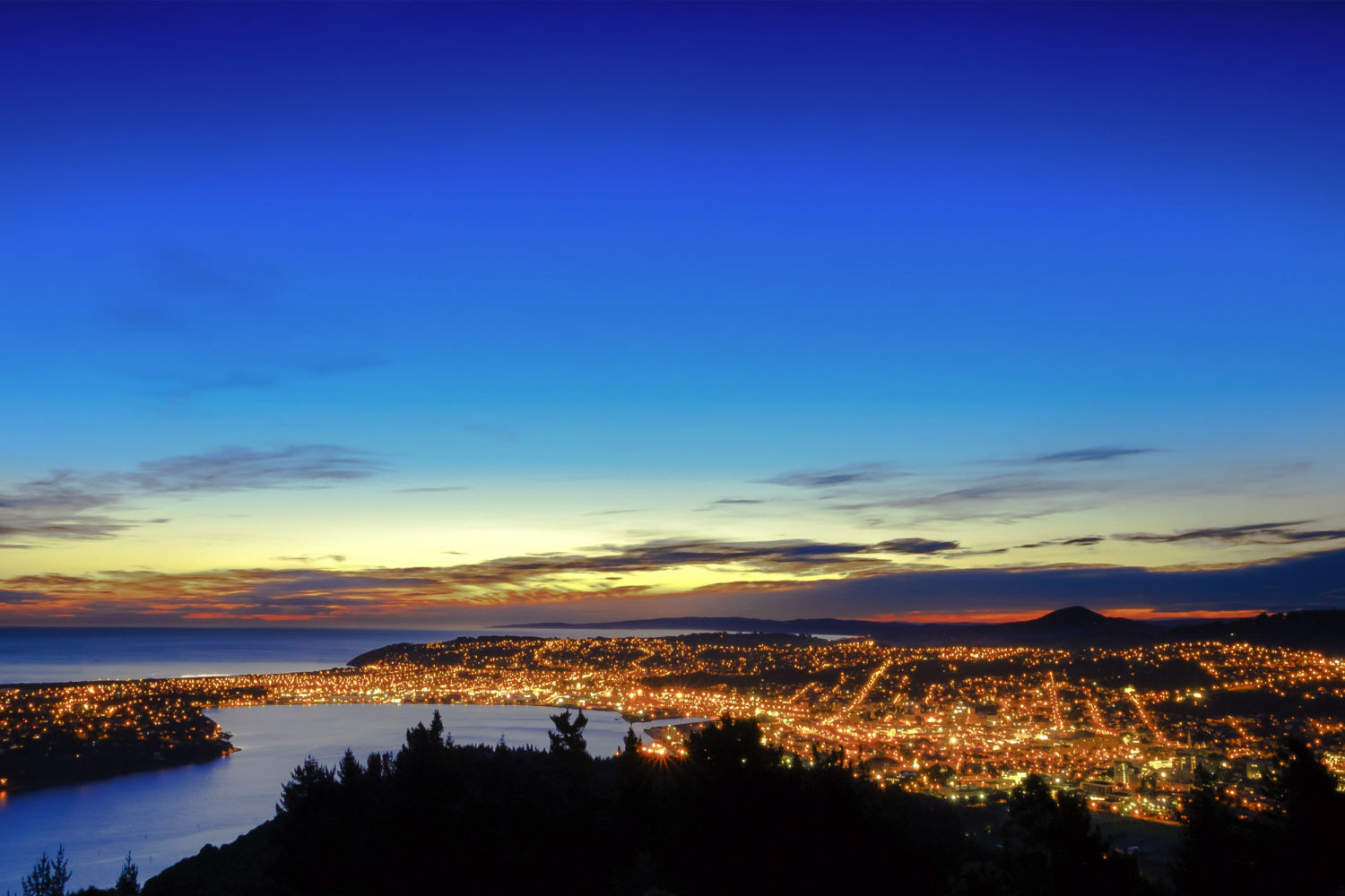 Dunedin: City Guide — Part Two